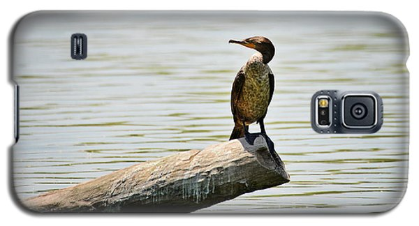 Galaxy S5 Case featuring the photograph Experience Nature In Estero San Jose by Christine Till