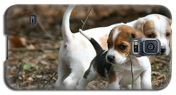 Exploring Beagle Pups Galaxy S5 Case
