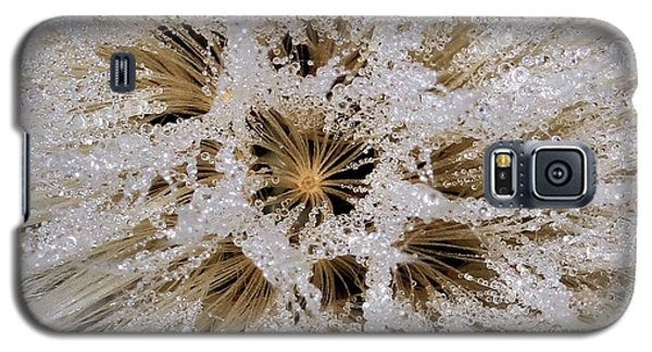 Explosion Of Jewels Galaxy S5 Case by Doris Potter