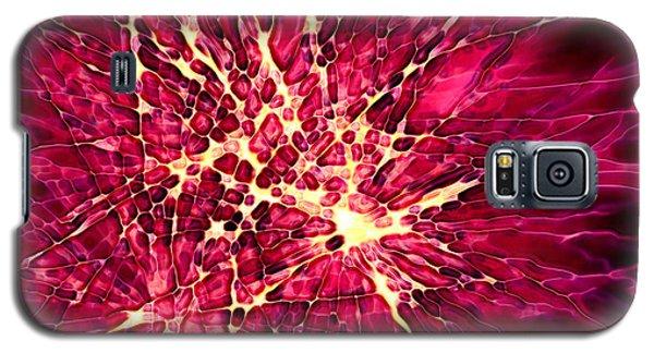 Explosion Galaxy S5 Case