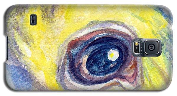 Eye Of Pelican Galaxy S5 Case