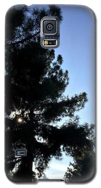 Eye Of Pine On Valleyheart Drive Galaxy S5 Case