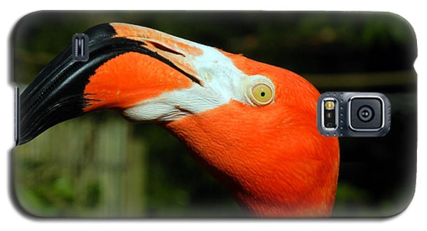 Galaxy S5 Case featuring the photograph Eye Of The Flamingo by Bill Swartwout