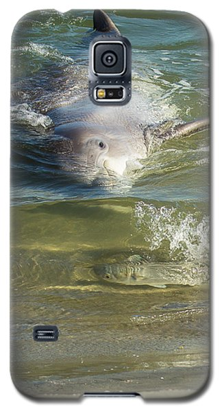 Galaxy S5 Case featuring the photograph Eye Spy by Patricia Schaefer
