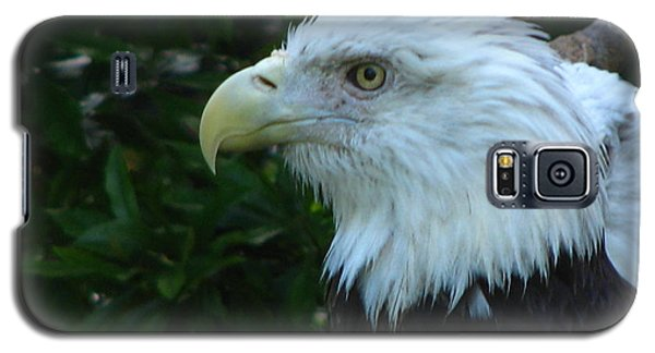 Galaxy S5 Case featuring the photograph Eyecon by Greg Patzer