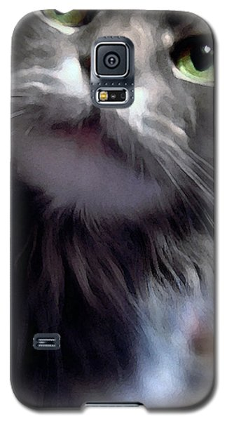 Eyes Nose Mouth Whiskers Galaxy S5 Case by Louise Kumpf
