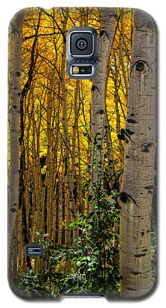 Galaxy S5 Case featuring the photograph Eyes Of The Forest by Ken Smith