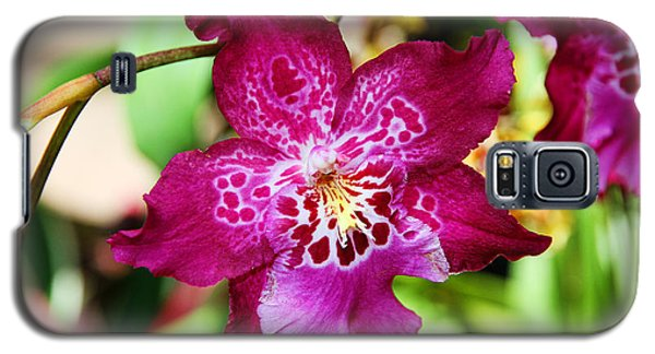 Fabulous Fushia Orchids By Diana Sainz Galaxy S5 Case