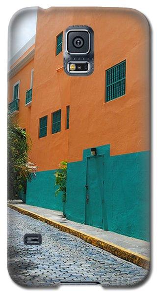 Facade Galaxy S5 Case