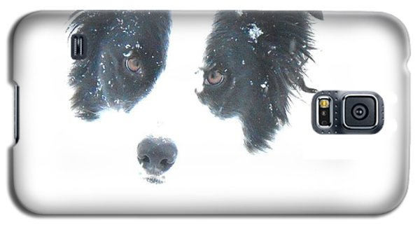 Face In The Snow Galaxy S5 Case by Aliceann Carlton