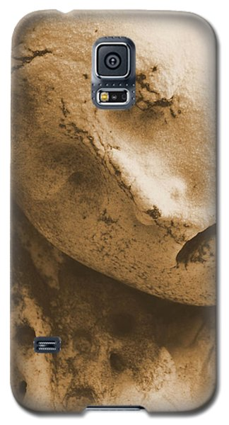 Galaxy S5 Case featuring the photograph Face Of An Angel by Nadalyn Larsen