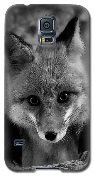 Face To Face Galaxy S5 Case