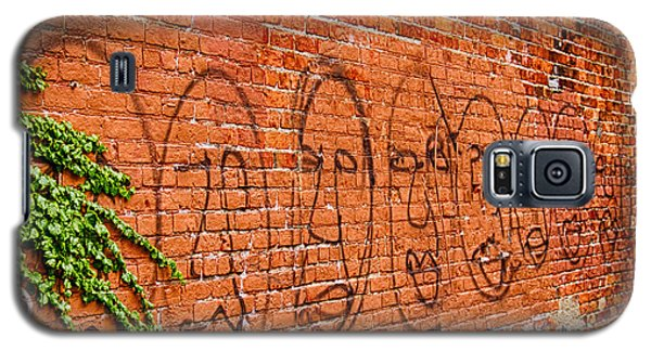 Faces On The Bricks Galaxy S5 Case by Jim Lepard