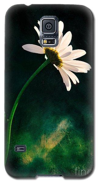Facing The Sun Galaxy S5 Case