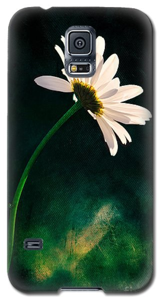 Facing The Sun Galaxy S5 Case