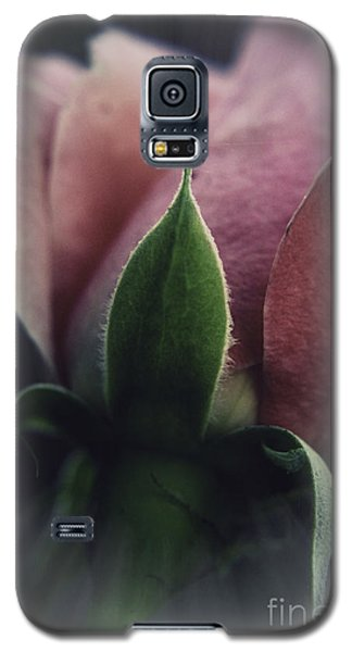 Faded Rose Galaxy S5 Case