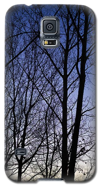 Galaxy S5 Case featuring the photograph Fading Light Through The Sycamore Trees by Micah Goff