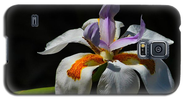 Fairy Iris Galaxy S5 Case by Richard Stephen