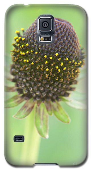 Fairy Ring Galaxy S5 Case