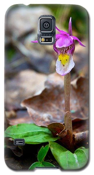 Fairy Slipper Orchid Galaxy S5 Case