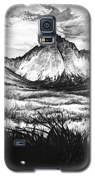 Galaxy S5 Case featuring the painting Faith As A Mustard Seed by Aaron Spong