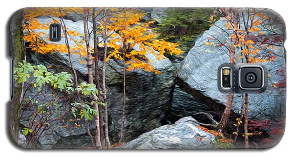 Galaxy S5 Case featuring the photograph Fall Among The Rocks by Bill Howard