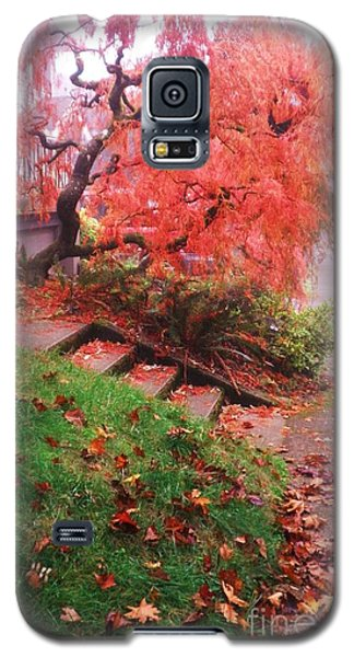 Galaxy S5 Case featuring the photograph Fall And Fog by Suzanne McKay