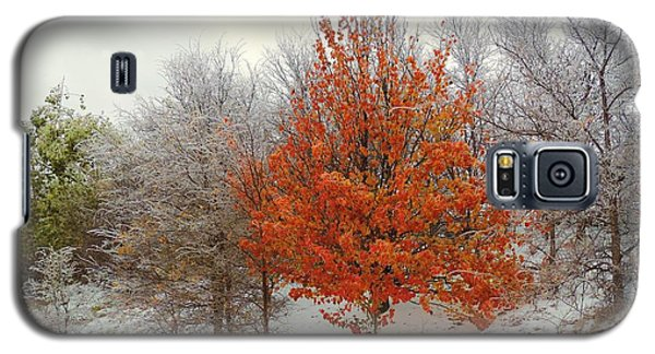 Fall And Winter Galaxy S5 Case