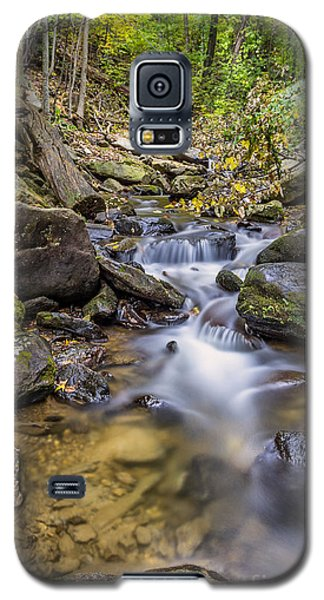 Fall Arrives At Amicalola Falls Galaxy S5 Case