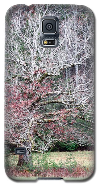 Fall At Cades Cove Galaxy S5 Case