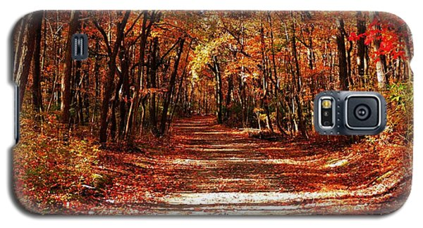 Galaxy S5 Case featuring the photograph Fall At Cheesequake by Raymond Salani III