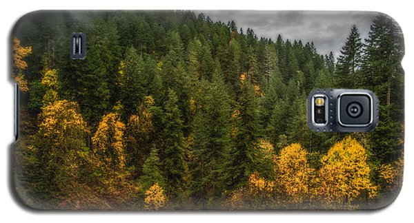 Galaxy S5 Case featuring the photograph Fall At Silver Falls by Dennis Bucklin
