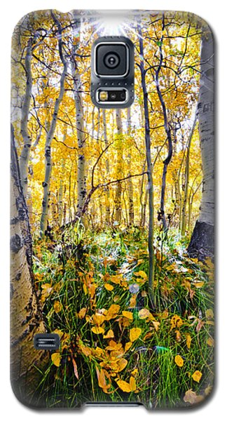 Fall At Silver Lake Galaxy S5 Case