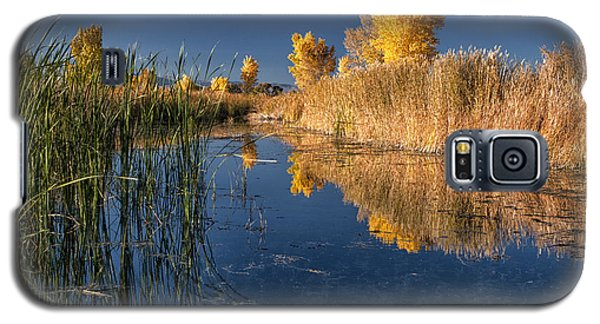 Fall At The Canal Galaxy S5 Case