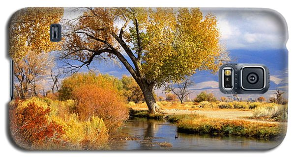 Fall At The River Galaxy S5 Case by Marilyn Diaz