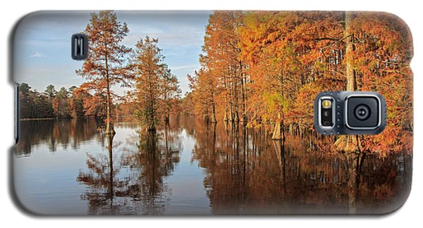 Fall At Trap Pond Galaxy S5 Case