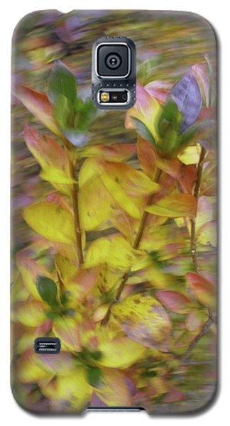 Autumn Azaleas 3 Galaxy S5 Case