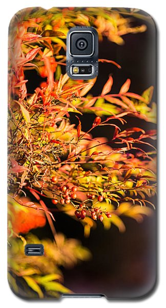 Galaxy S5 Case featuring the photograph Fall Berries by Mike Lee