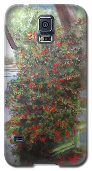 Fall Berries Galaxy S5 Case