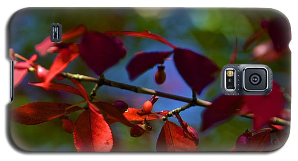 Fall Bokeh Galaxy S5 Case