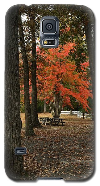 Fall Brings Changes  Galaxy S5 Case by Amazing Photographs AKA Christian Wilson