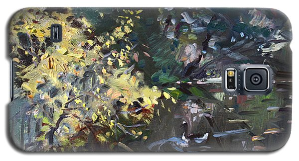 Geese Galaxy S5 Case - Fall By The Pond by Ylli Haruni
