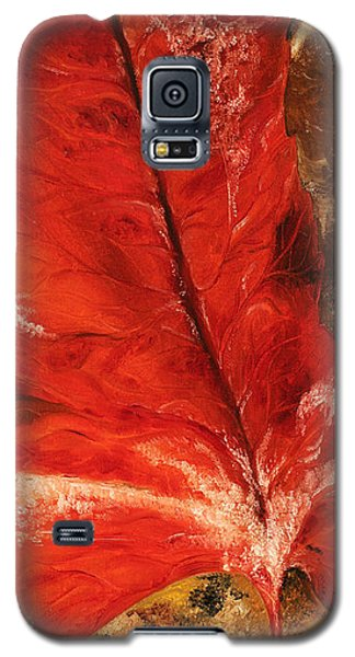 Fall Calmness Galaxy S5 Case
