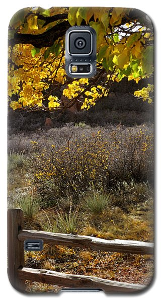 Fall Canopy And Fence 12476 Galaxy S5 Case