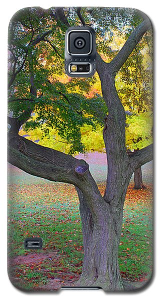 Galaxy S5 Case featuring the photograph Fall Color by Lisa Phillips
