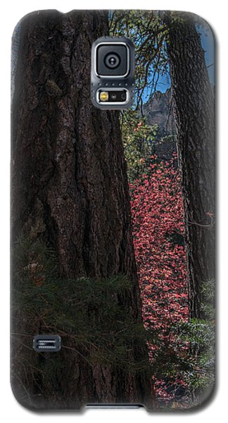 West Fork Perspective Galaxy S5 Case