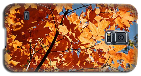 Fall Colors 2 Galaxy S5 Case