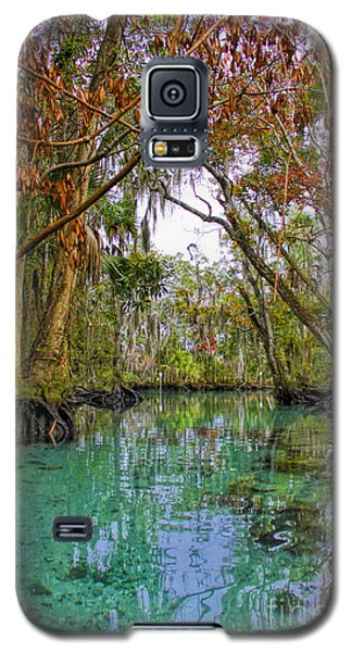 Fall Colors Along Three Sisters Spring Run Galaxy S5 Case