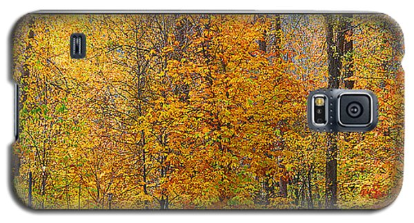 Fall Colors Galaxy S5 Case by John Bushnell