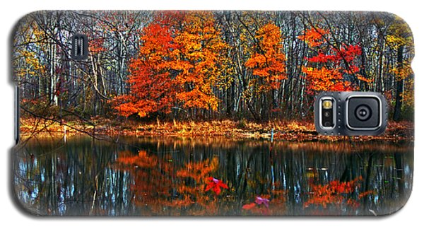 Fall Colors On Small Pond Galaxy S5 Case